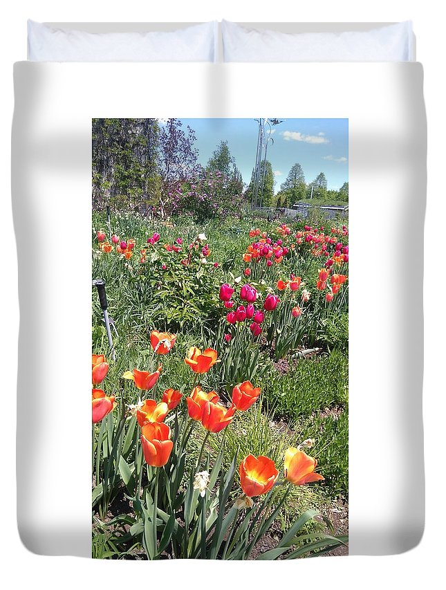 Spring Flowers Grow In A Garden In May In North America Duvet Cover featuring the photograph Spring Flowers In A Garden by Connie Du