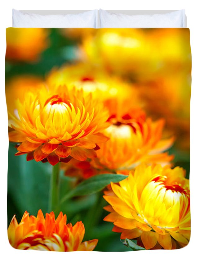 Spring Flowers Duvet Cover featuring the photograph Spring Flowers In The Afternoon by Az Jackson