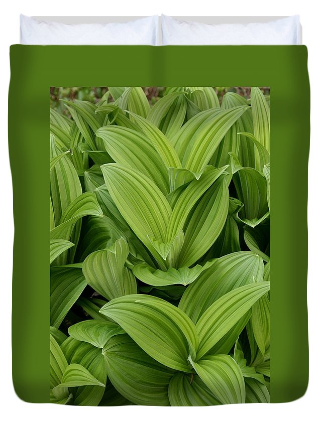 Plants Duvet Cover featuring the photograph Spring Green by Angie Schutt