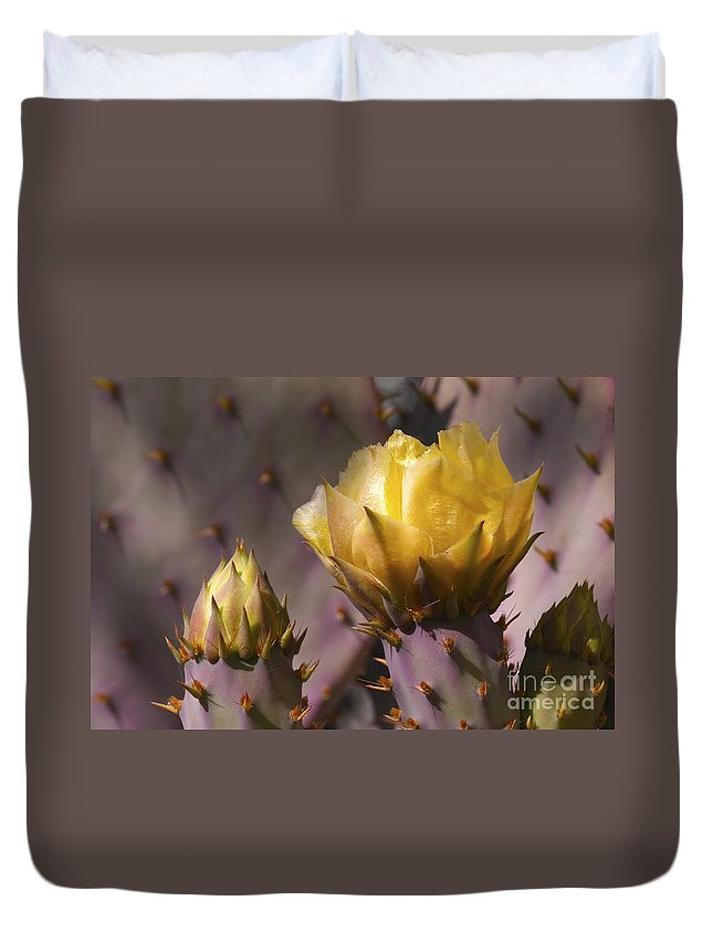Southwest Duvet Cover featuring the photograph Spring In The Desert by Sandra Bronstein