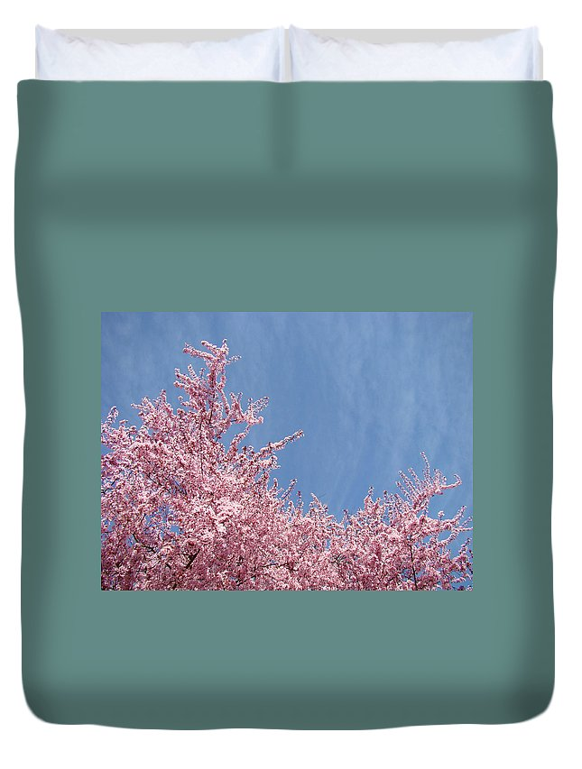 Colorful Duvet Cover featuring the photograph Spring Landscape Pink Trees Blossoms Blue Sky Baslee Troutman by Baslee Troutman