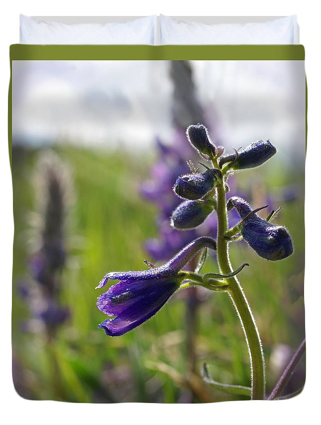 Larkspur Duvet Cover featuring the photograph Spring Larkspur by Heather Coen