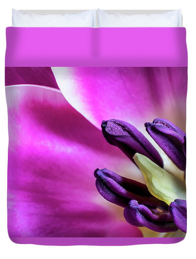 Background Duvet Cover featuring the digital art Spring Life by Gary Ellis
