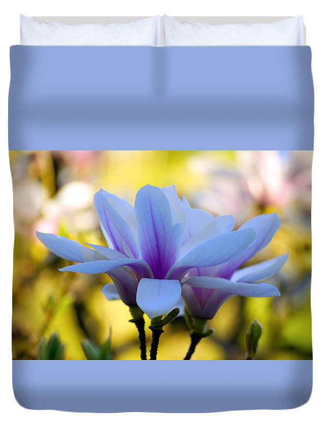 Nature Duvet Cover featuring the photograph Spring Magnolia by Emerita Wheeling