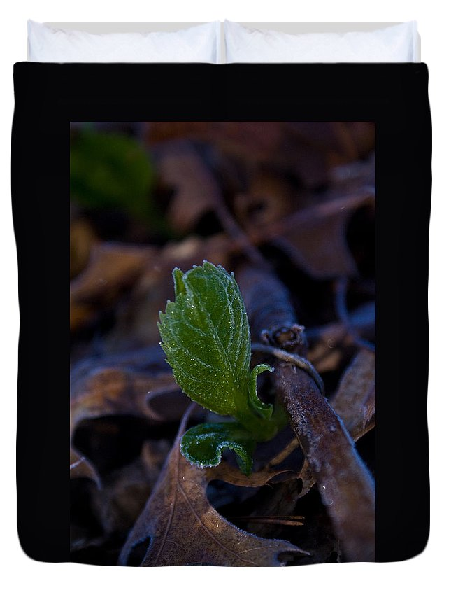 Geen Duvet Cover featuring the photograph Spring Peeps Forth by Douglas Barnett