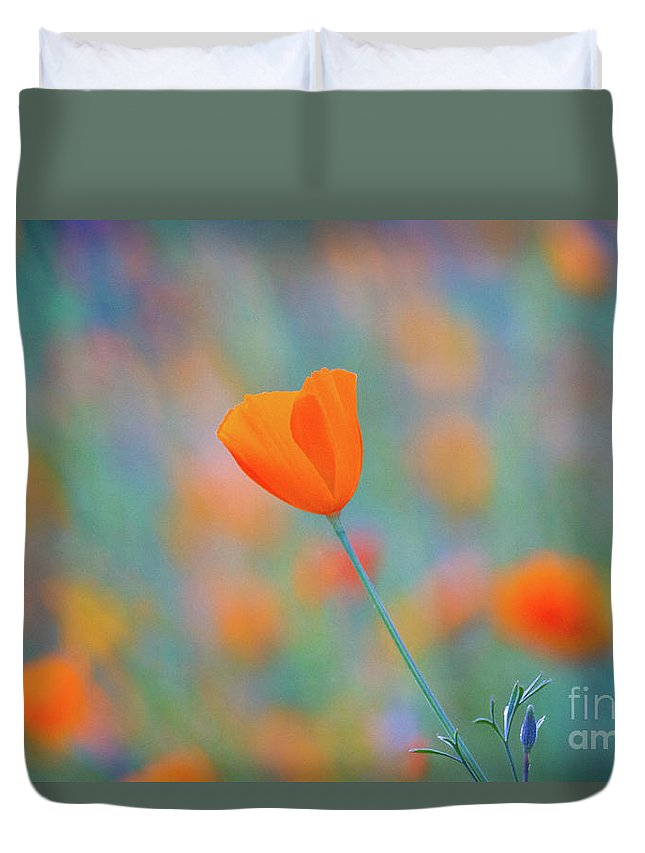 Sierra Nevada Duvet Cover featuring the photograph Spring Poppy by Anthony Michael Bonafede