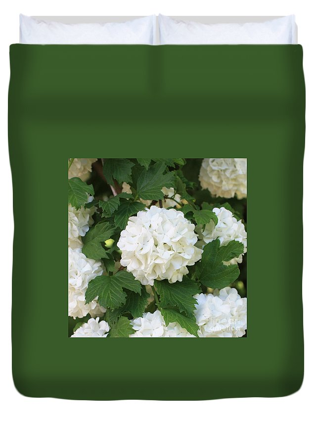 Snowball Duvet Cover featuring the photograph Spring Snowball by Carol Groenen
