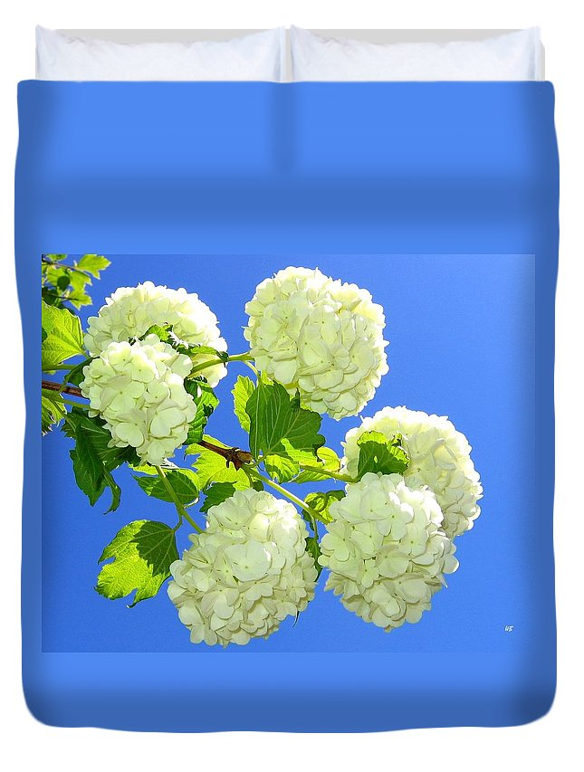 Snowballs Duvet Cover featuring the photograph Spring Snowballs by Will Borden