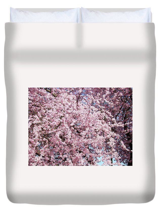 Tree Duvet Cover featuring the photograph Spring Trees Art Prints Pink Springtime Blossoms Baslee Troutman by Baslee Troutman