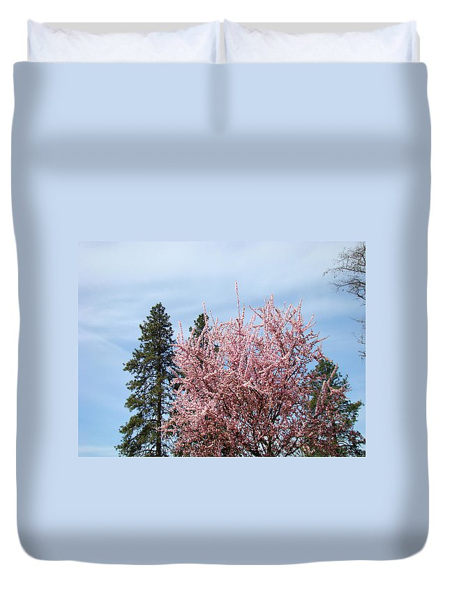 Trees Duvet Cover featuring the photograph Spring Trees Bossoming Landscape Art Prints Pink Blossoms Clouds Sky by Baslee Troutman