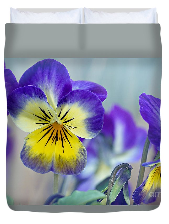 Pansies Duvet Cover featuring the photograph Spring Violas by Susan Garver