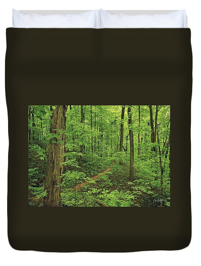 Canada Duvet Cover featuring the photograph Spring Walk by Phill Doherty