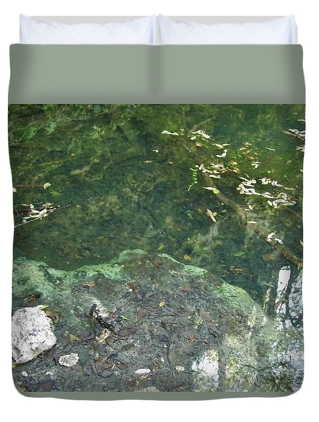 Grotto Duvet Cover featuring the photograph Spring Water At The Grotto by D Hackett