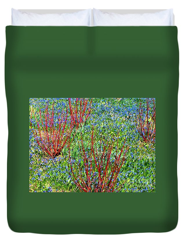 Spring Duvet Cover featuring the photograph Springtime Impression by Ann Horn