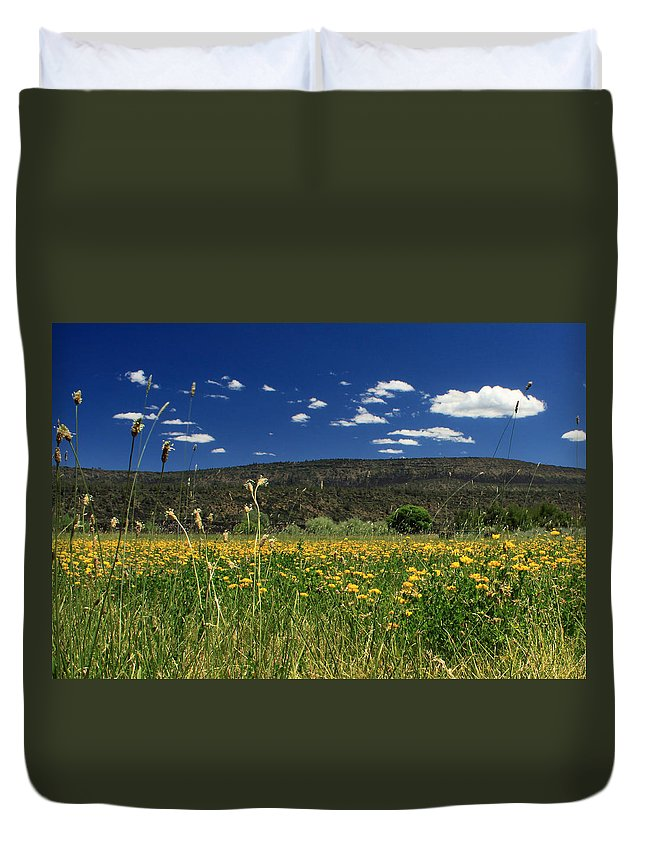 Landscape Duvet Cover featuring the photograph Springtime In Hat Creek by James Eddy