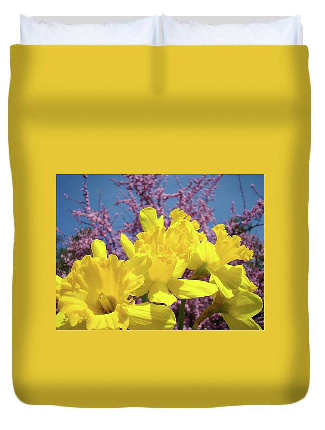 Nature Duvet Cover featuring the photograph Springtime Yellow Daffodils Art Print Pink Blossoms Blue Sky Baslee Troutman by Baslee Troutman