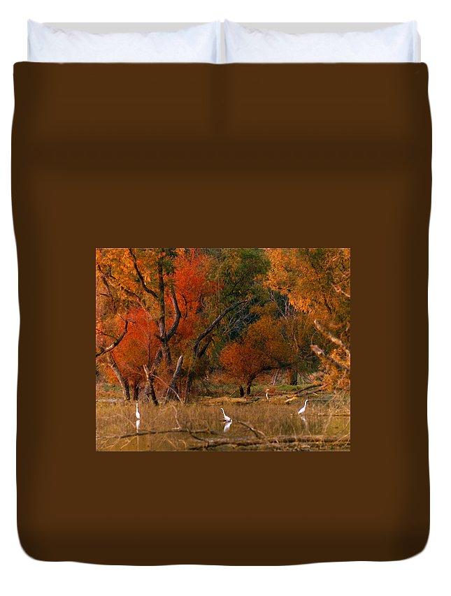 Landscape Duvet Cover featuring the photograph Squaw Creek Egrets by Steve Karol