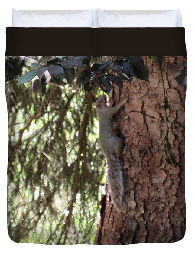 Tree Duvet Cover featuring the photograph Squirrel by Emily Boltinghouse