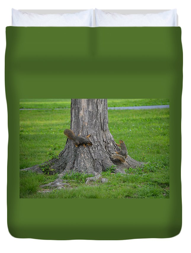 Squirrel Duvet Cover featuring the photograph Squirrel Tag by Belinda Stucki