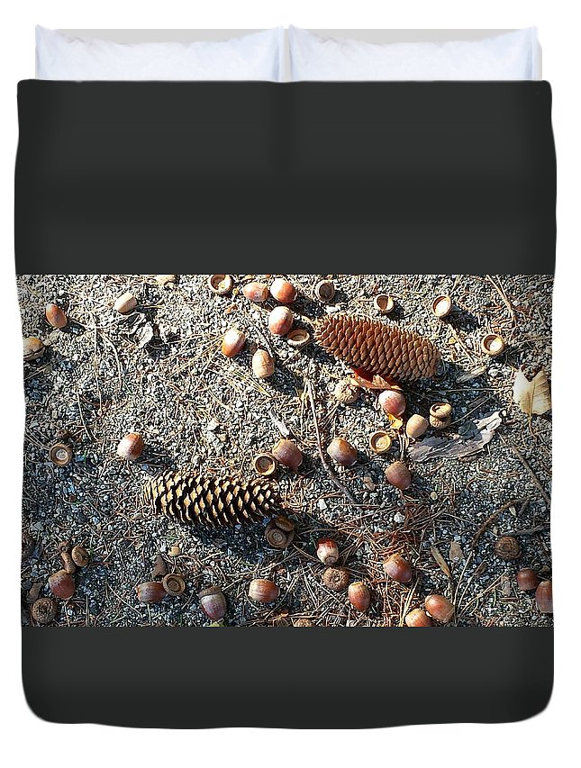 Landscape - Seasons - New England Duvet Cover featuring the photograph Squirrels Delight by Cynthia Cozzi