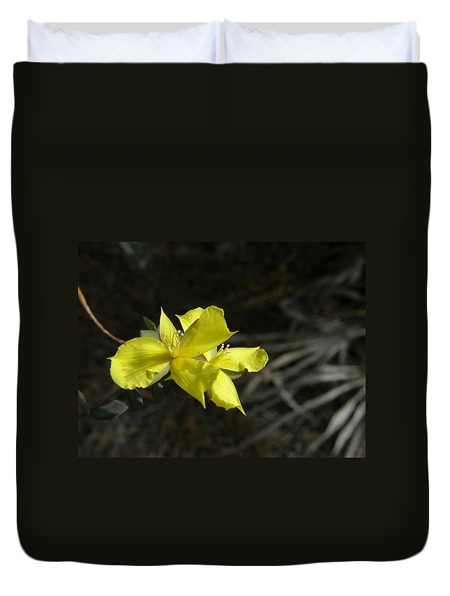Flower Duvet Cover featuring the photograph St. John by Kimberly Mohlenhoff