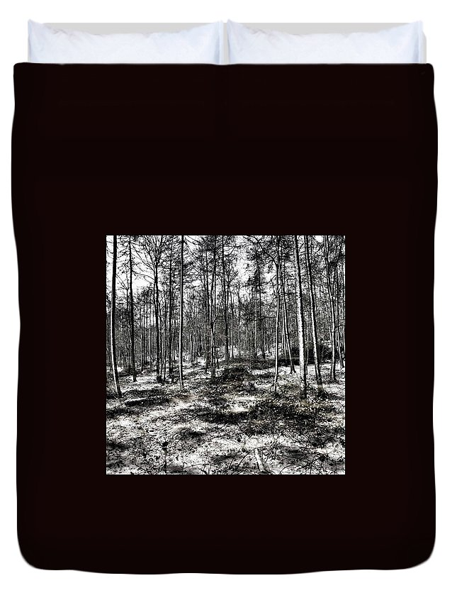 Stlawrenceswood Duvet Cover featuring the photograph St Lawrence's Wood, Hartshill Hayes by John Edwards