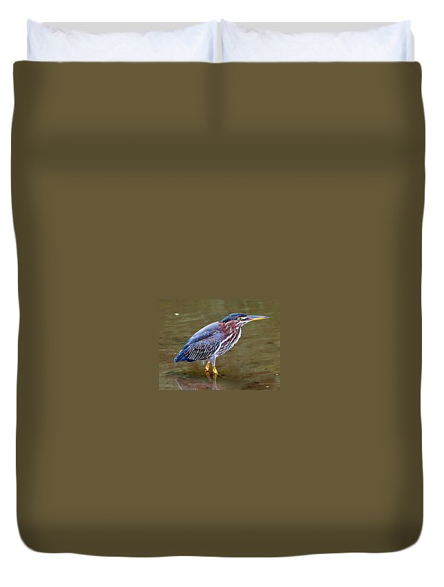 Bird Duvet Cover featuring the photograph Stalker by Gary Adkins