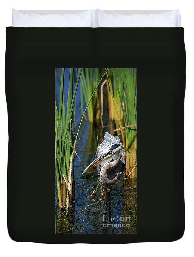 Heron Duvet Cover featuring the photograph Stalking The Fish by Pamela Blizzard