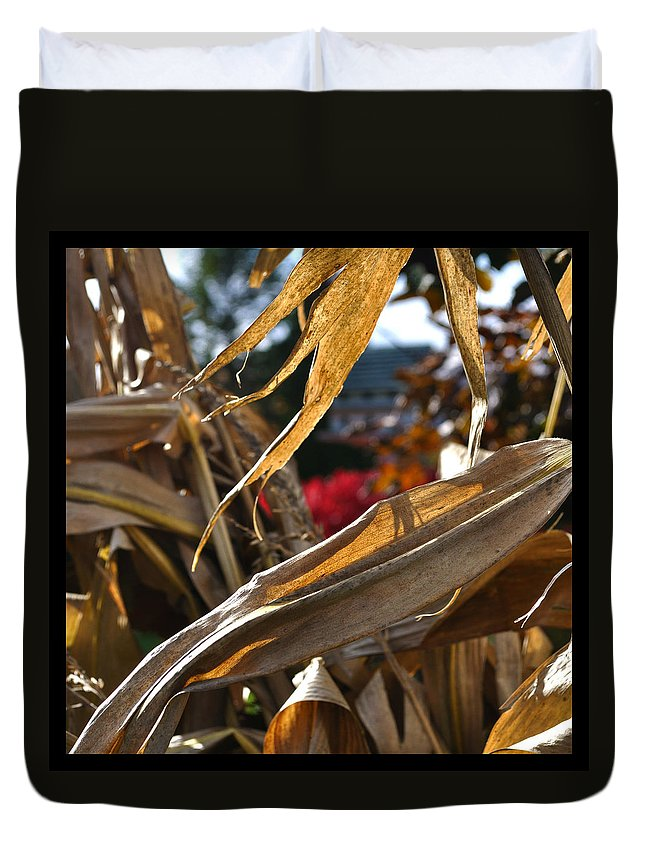 Corn Stalk Duvet Cover featuring the photograph Stalks by Tim Nyberg