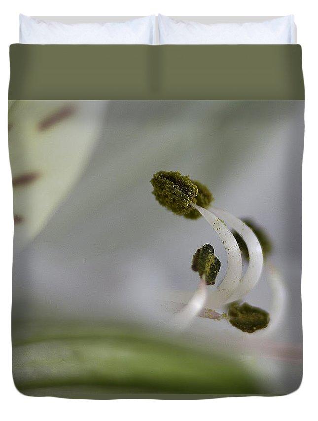 Stamen Duvet Cover featuring the photograph Stamens by Robert Murray