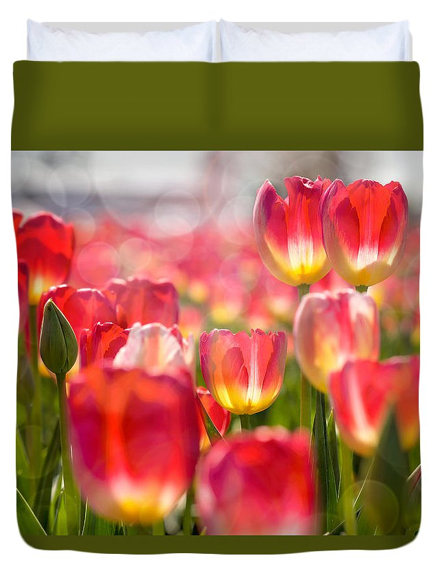 Wooden Shoe Duvet Cover featuring the photograph Standing Out In The Crowd by David Gn