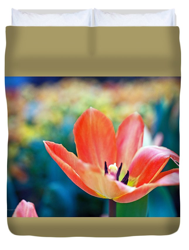 Lily Duvet Cover featuring the photograph Standing Proud by Edward Congdon