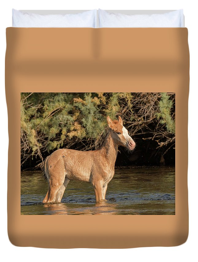 Equine Duvet Cover featuring the photograph Standing Tall by Robin O'Donnell