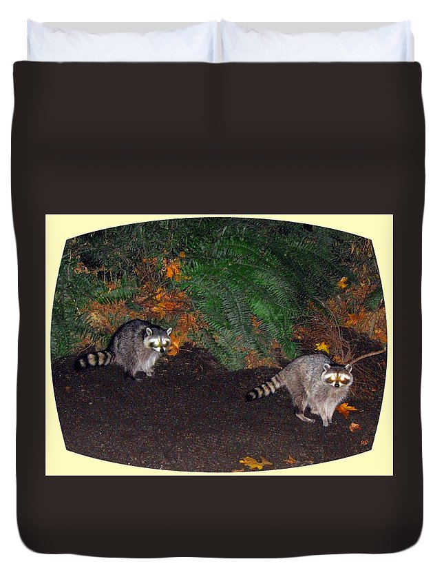 Raccoons Duvet Cover featuring the photograph Stanley Park Rascals by Will Borden