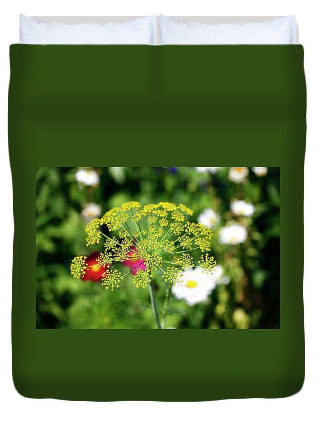 Starburst Duvet Cover featuring the photograph Starburst by Marilyn Hunt