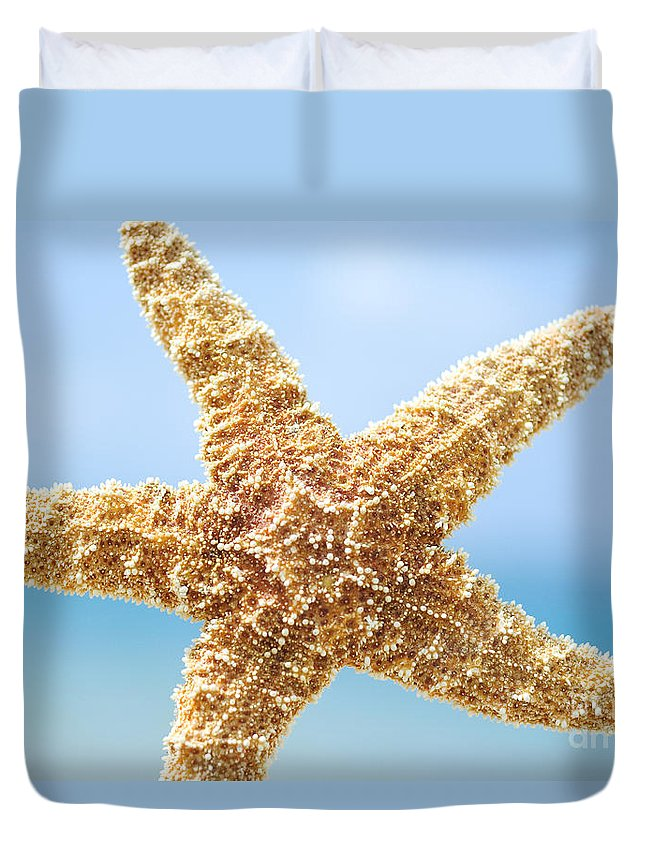 Afternoon Duvet Cover featuring the photograph Starfish Close-up by Mary Van de Ven - Printscapes