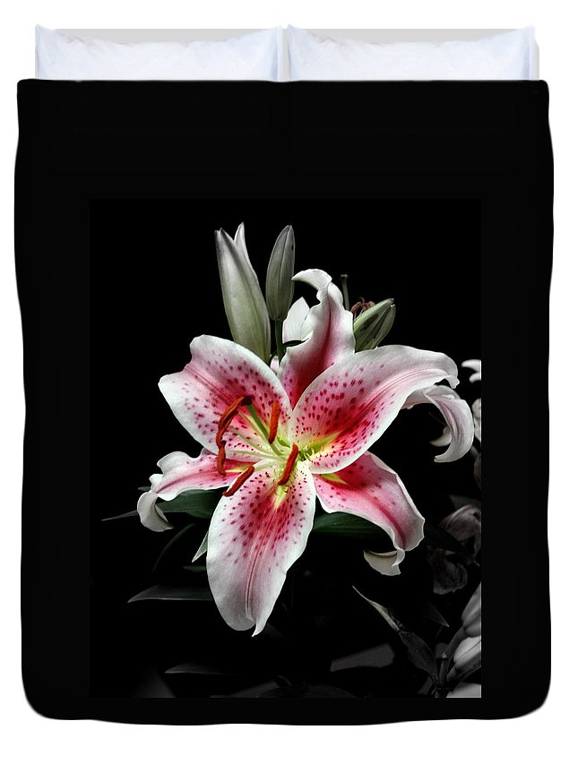 Flower Duvet Cover featuring the photograph Stargazer On Black 11x14 by Randall Thomas Stone