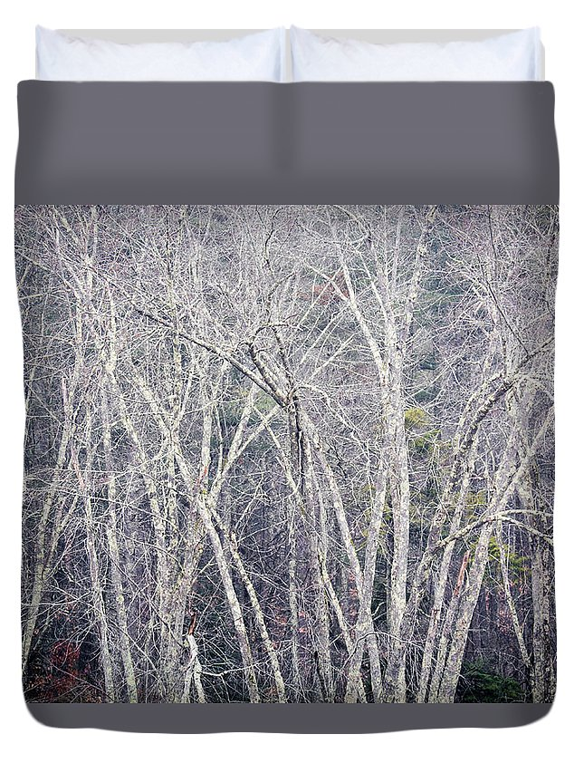 Stark Trees Duvet Cover featuring the photograph Stark Winter by Diane Moore
