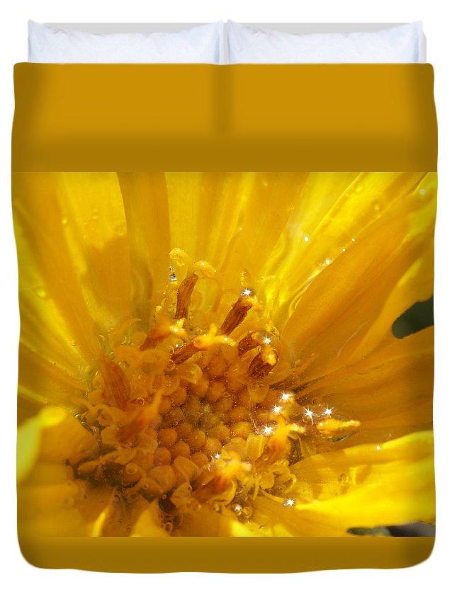 Goldeneye Duvet Cover featuring the photograph Starry Goldeneye by Heather Coen