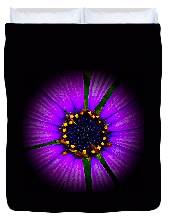 Flower Duvet Cover featuring the photograph Stars In The Daisy by Tim G Ross