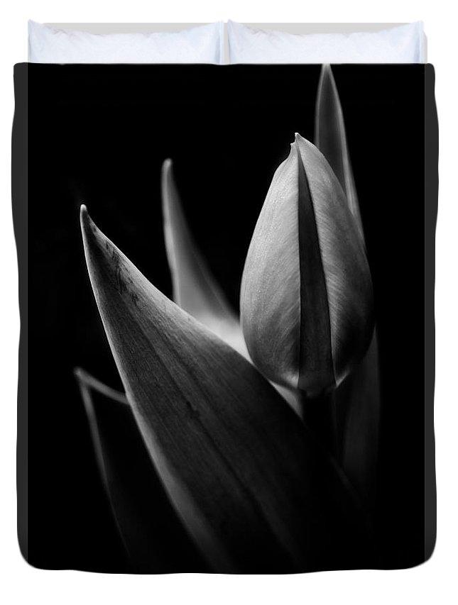 Tulip Duvet Cover featuring the photograph Statuesque by Venetta Archer