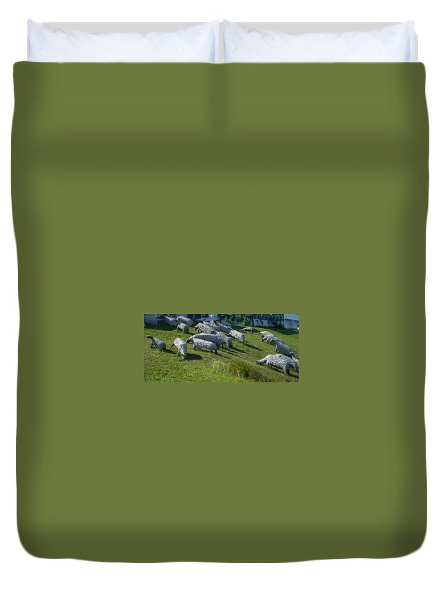 Sheep Duvet Cover featuring the photograph Ste Flavie 002 by Line Gagne