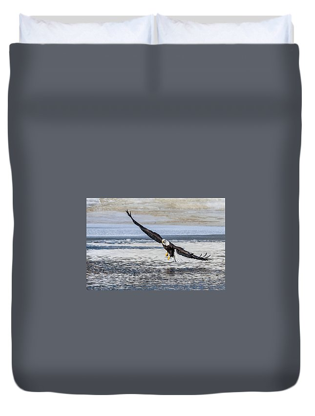 Bald Eagle Landing Fishing Duvet Cover featuring the photograph Steady Approach by David Heemsbergen