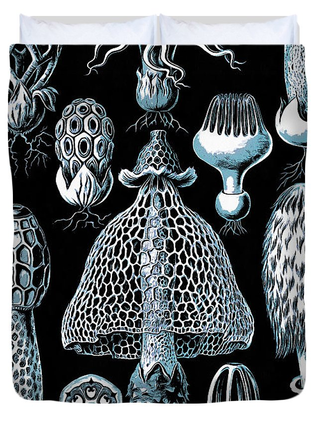 Scientific Duvet Cover featuring the drawing Stinkhorn Mushrooms Vintage Illustration by Edward Fielding