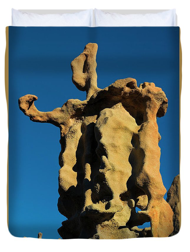 Siltstone Duvet Cover featuring the photograph Stone Bot by Mike Dawson