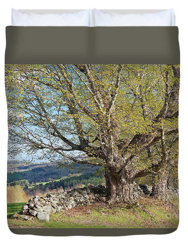 Spring Duvet Cover featuring the photograph Stone Wall Spring Landscape by Alan L Graham