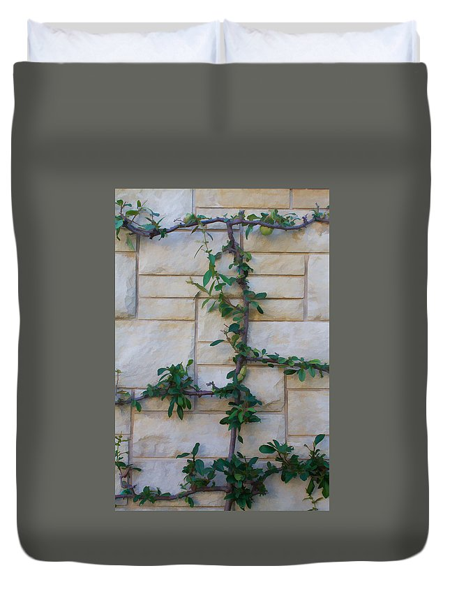 Garden Duvet Cover featuring the photograph Stone Wall Vine by Henry Fitzthum