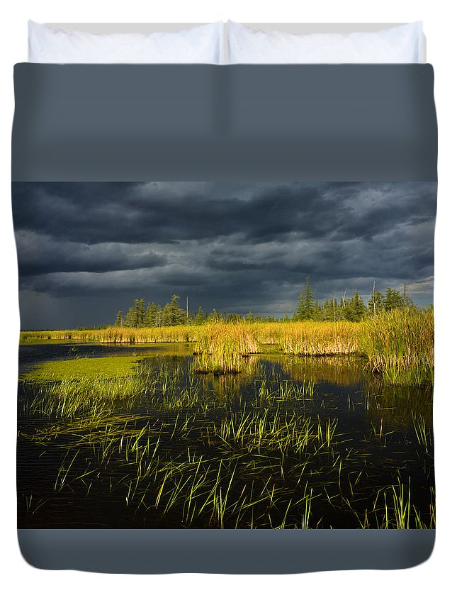 Storm Light Duvet Cover featuring the photograph Storm Light At Patten Lake #1 by Irwin Barrett