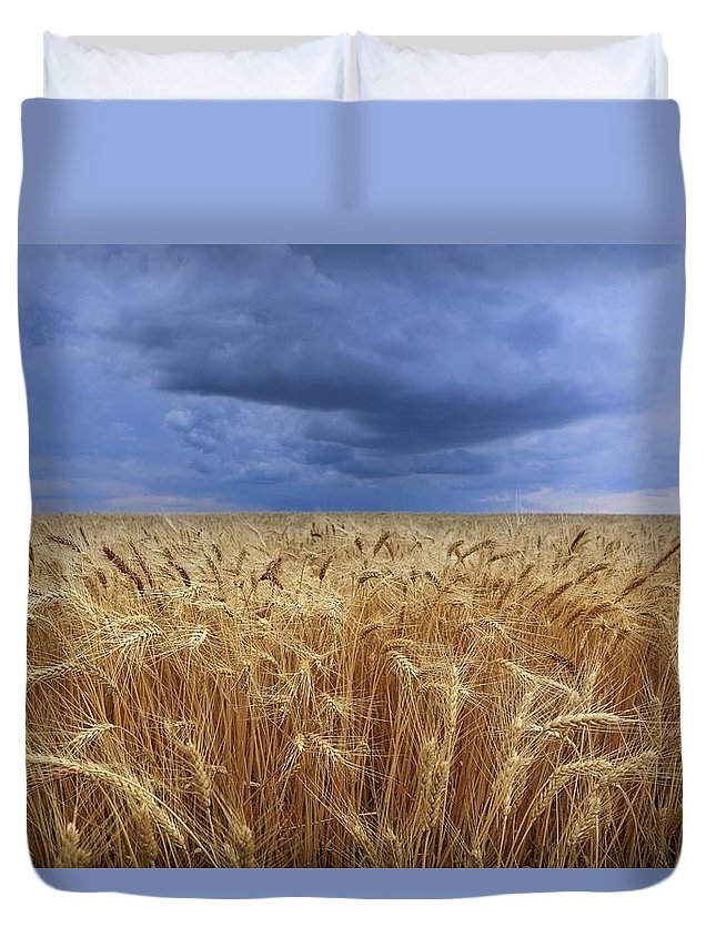 Stormy Wheat Field Duvet Cover featuring the photograph Stormy Wheat Field by Lynn Hopwood
