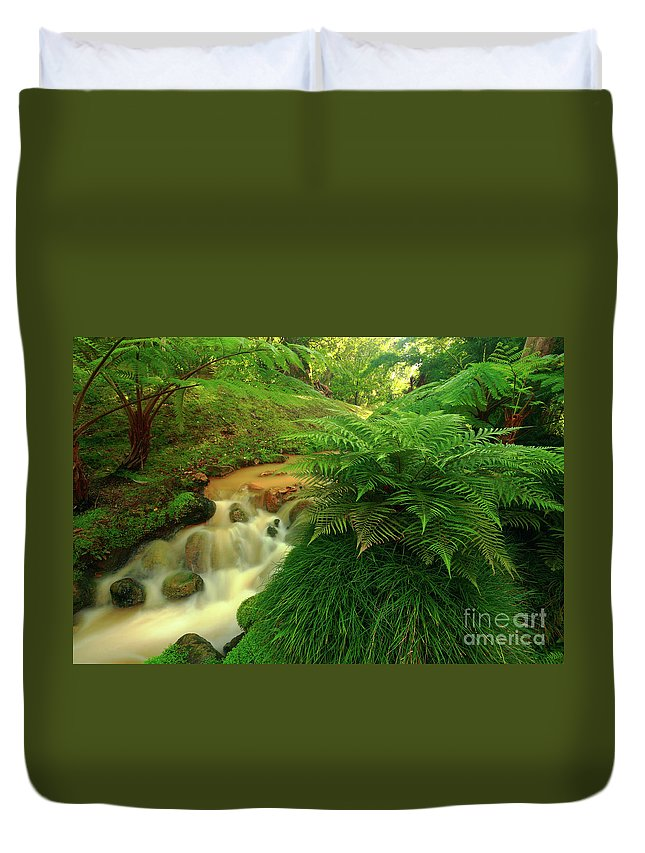 Scenery Duvet Cover featuring the photograph Stream by Gaspar Avila